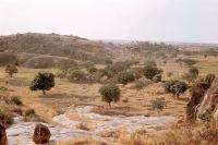Savanna ecosystem in central Nigeria